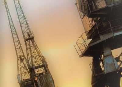 Misty Cranes
